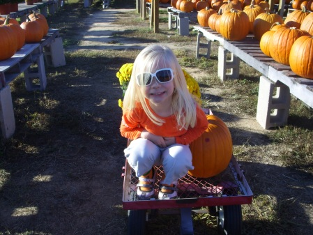 Fun times at the Pumpkin Patch